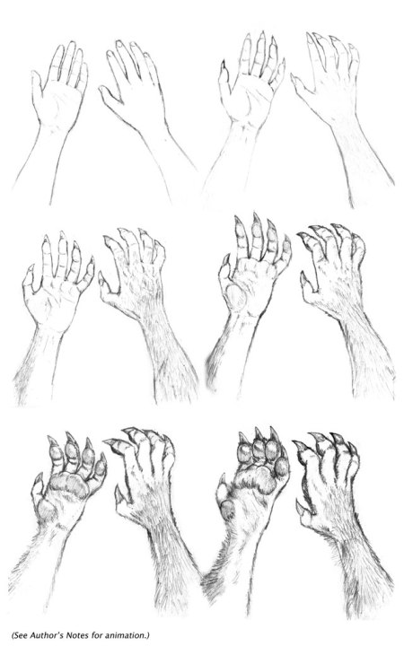 Kate_Hands_Transformation_Seq__by_dirktiede