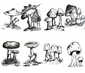 montagem-cogumelos6