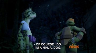 ninjadwag