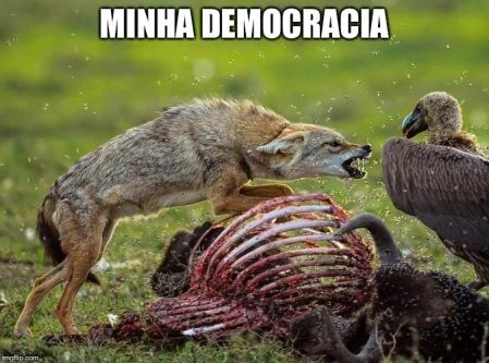 MINE DEMOCRACY
